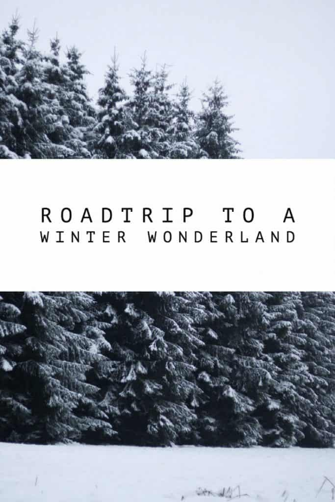 Let's Go On A Road Trip To Winter Wonderland